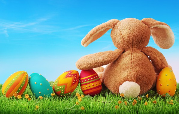Picture holiday, toy, eggs, rabbit, Easter, weed, Bunny