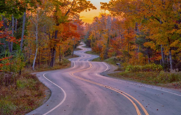 Picture Road, Autumn, Beauty