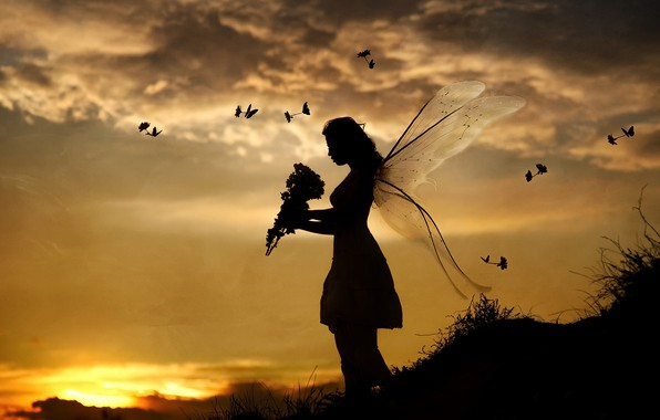Picture girl, sunset, birds, butterfly