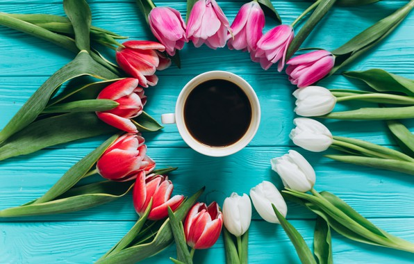 Picture flowers, coffee, colorful, Cup, tulips, pink, white, white, fresh, wood, pink, flowers, beautiful, tulips, coffee …