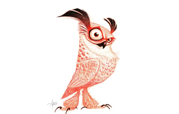 Picture owl, drawing, Pose, piercing look
