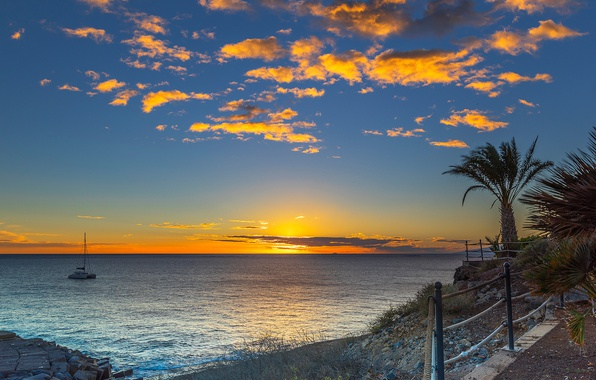 Picture sea, beach, the sky, sunset, stones, palm trees, coast, yacht, horizon, Spain, The Canary Islands, …