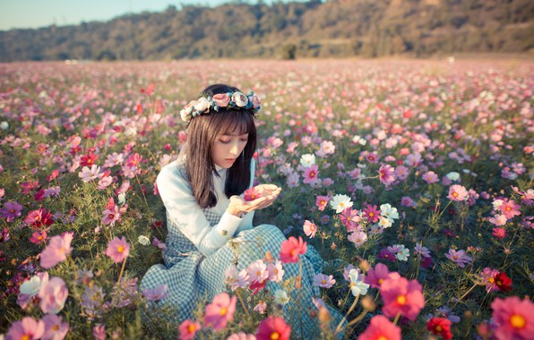 Picture field, girl, flowers, mood, meadow, Asian, wreath, kosmeya