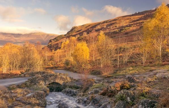 Picture autumn, trees, mountains, England, Cumbria
