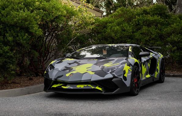 Picture Lamborghini, Aventador, Camo