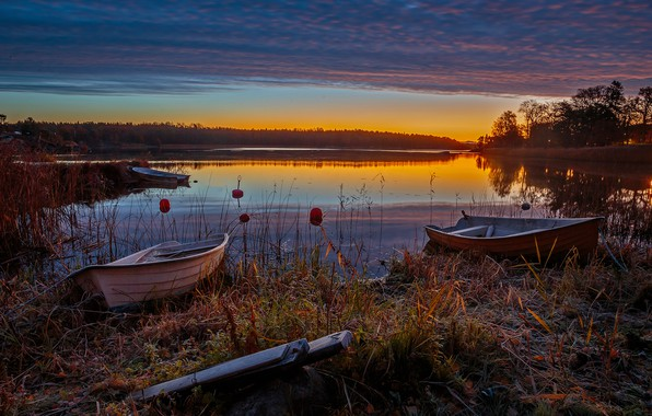 Picture frost, forest, the sky, grass, clouds, trees, sunset, river, shore, boats, the evening, Sweden