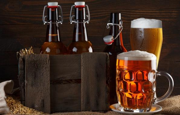 Picture foam, glass, beer, mug, bottle, box, burlap, grain