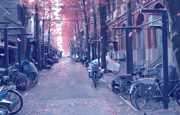 Picture motorcycles, street, posts, wire, pavers, petals, art, bikes, flowering in the spring, deserted, Xi Chen …