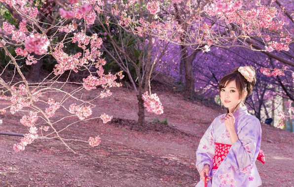 Picture Nature, Girl, Trees, Sakura, Asian, Outfit