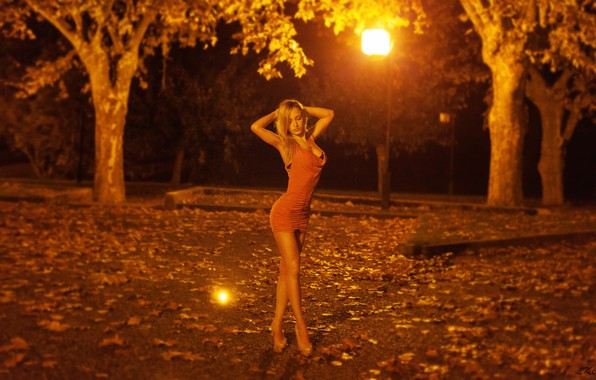 Picture leaves, trees, night, lights, sexy, Park, model, figure, slim, dress, hairstyle, blonde, lights, shoes, legs, …
