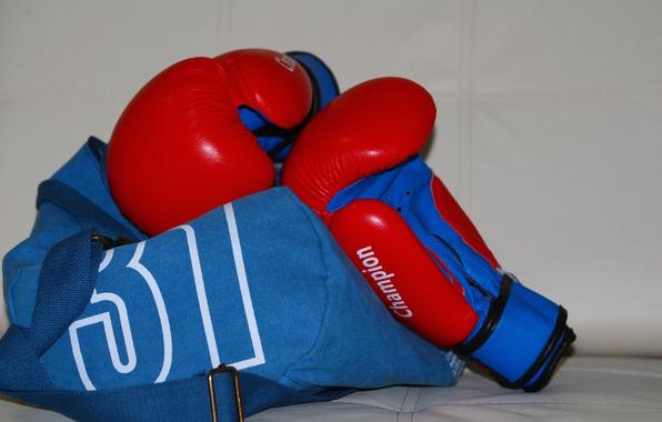 Picture gloves, bag, Boxing gloves