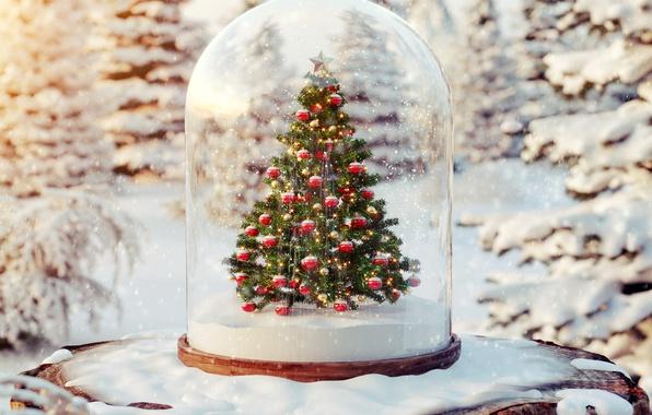 Picture balls, snow, tree, tree, winter, snow, merry christmas, christmas tree