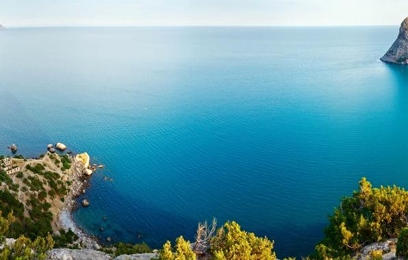 Picture sea, the sky, trees, stones, rocks, coast, home, horizon, panorama, Russia, Crimea