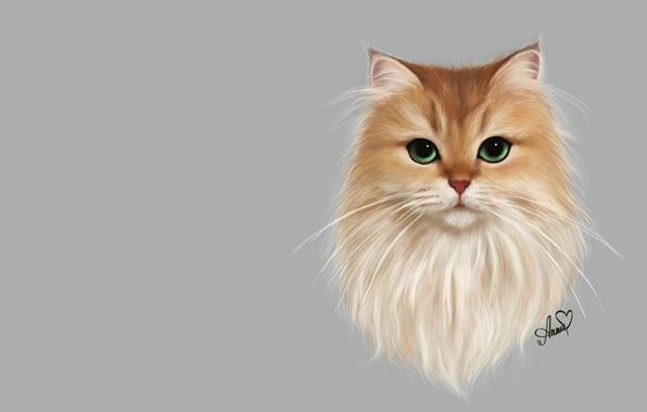 Picture cat, cat, art, pussy, Anne Novik, Smoothie cat