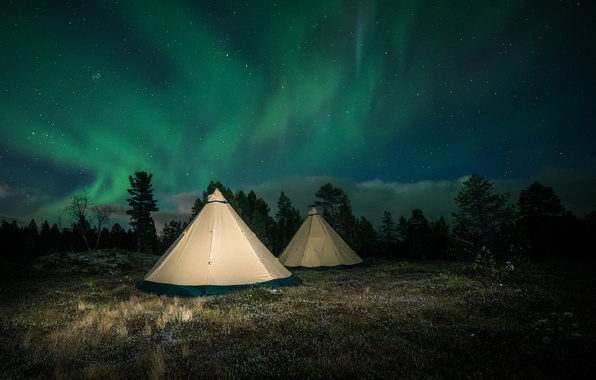 Picture forest, the sky, trees, night, glade, stars, Northern lights, Finland, tents, Lapland