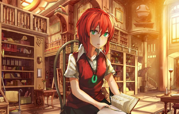 Picture girl, anime, art, bride of the sorcerer, The Ancient Magus' Bride