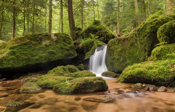 Picture forest, stones, waterfall, moss, Germany, river, Germany, Baden-Württemberg, Baden-Württemberg, Black Forest, The black forest, Gertelbach …