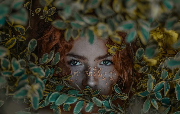 Picture eyes, look, leaves, girl, face, red, redhead