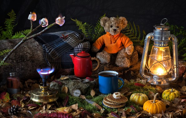 Picture leaves, toy, lamp, moss, branch, kettle, mug, lantern, pumpkin, bear, plaid, fern, compass, waffles, Teddy …