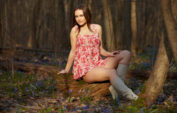 Picture forest, smile, Brown hair, view, sunlight, Zlatka