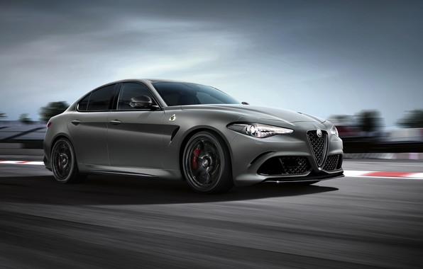 Picture speed, Alfa Romeo, racing track, 2018, Four-leaf clover, Giulia, Nurburgring Edition