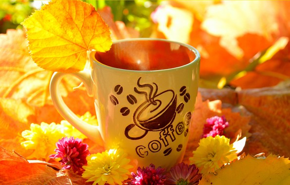 Picture Flowers, Autumn, Leaves, mug, Fall, Flowers, Autumn, Leaves