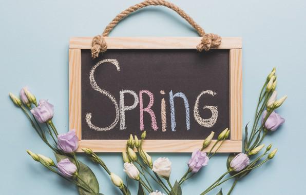 Wallpaper Flowers Spring Board Buds Wood Flowers Spring