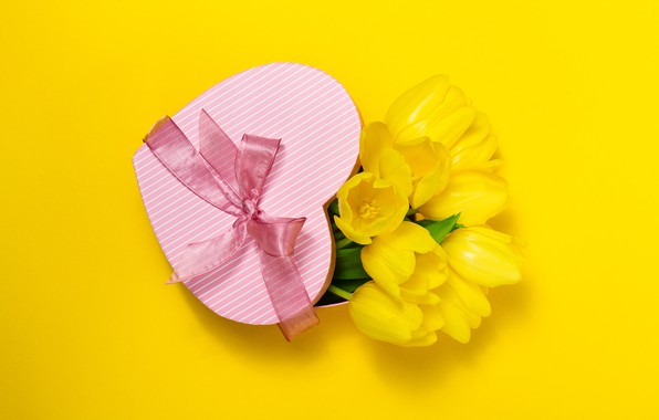 Picture flowers, gift, heart, bouquet, yellow, tulips, love, bow, heart, yellow, flowers, romantic, tulips, present, spring