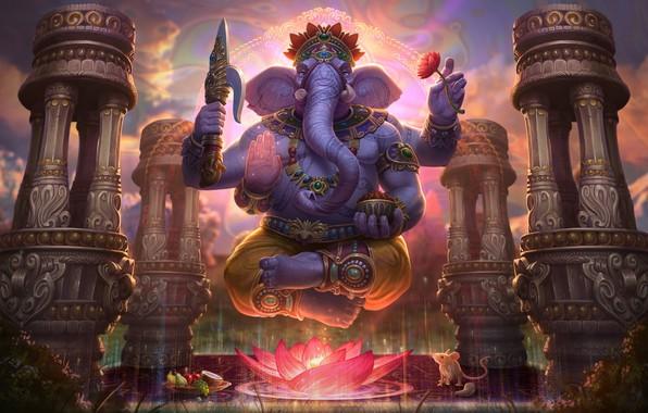 Picture elephant, art, Lotus, Ganesha, Jon Neimeister, Ganesha