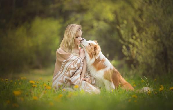Picture grass, girl, flowers, mood, dog, spring, friendship, plaid, dandelions, friends, lawn, bokeh