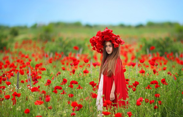 Picture field, flowers, nature, Maki, girl