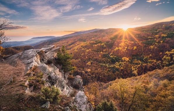Picture nature, sunrise, morning