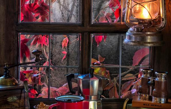 Picture autumn, style, rain, books, coffee, cookies, window, mug, lantern, binoculars, pumpkin, still life, coffee grinder