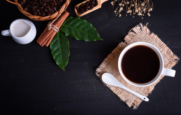 Picture leaves, background, Coffee, drink, coffee beans