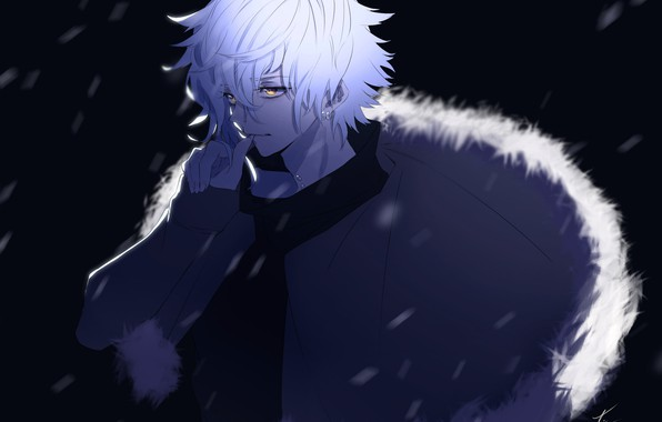 Picture night, anime, art, guy, Fate / Grand Order