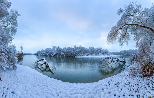 Picture winter, snow, trees, river, Russia, Stavropol Krai, the terek river