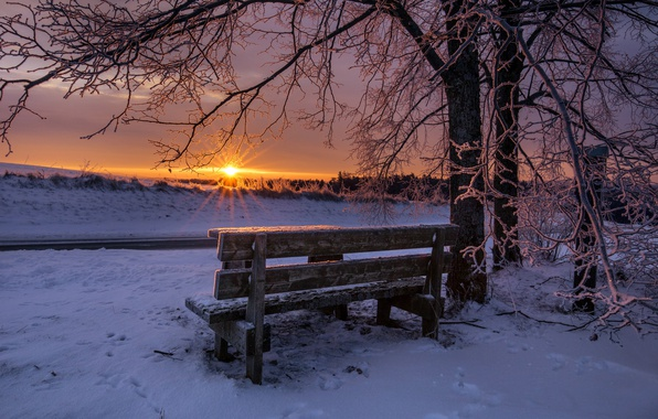 Picture winter, sunset, bench