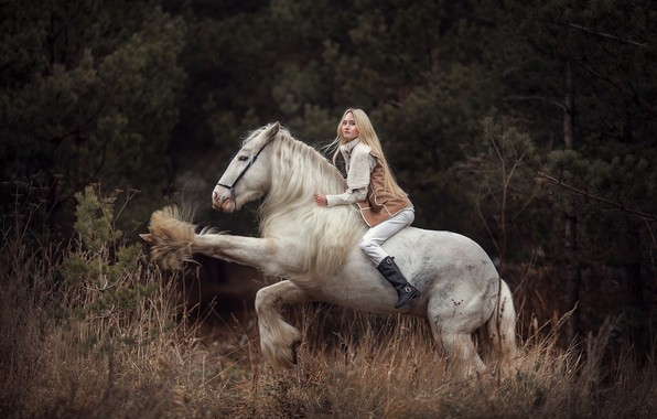 Photo wallpaper girl, horse, blonde, rider