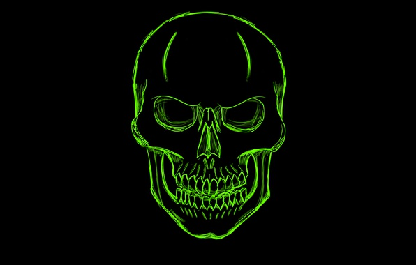 Picture green, skull, minimalism, head, skeleton, sake
