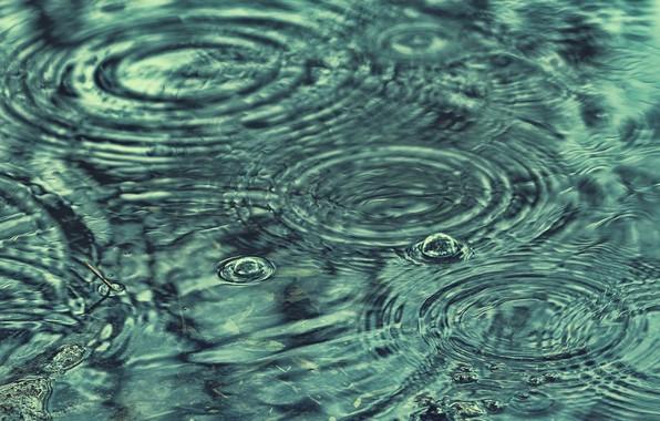 Picture water, drops, rain