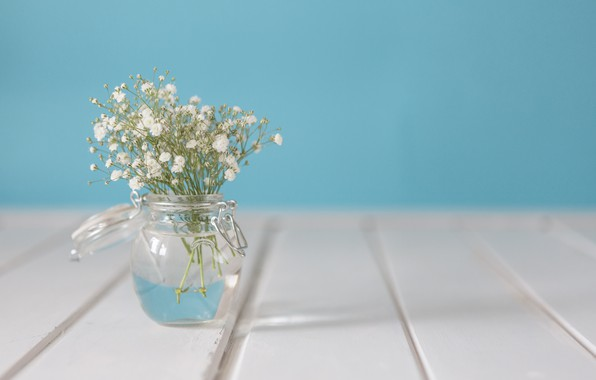 Picture flowers, bouquet, vase, white, with, flowers, vase