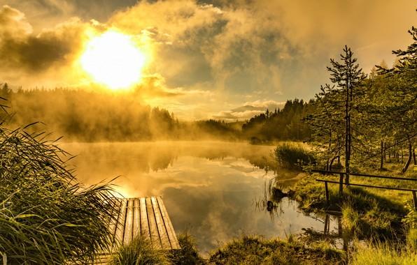Picture fog, lake, morning, pier, the bridge