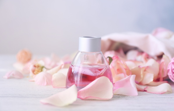 Picture perfume, petals, rose, pink, petals, pink roses, spa, oil