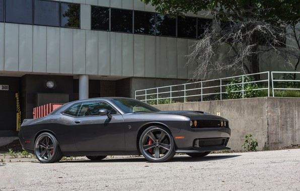 Picture dodge, challenger, gray, hellcat