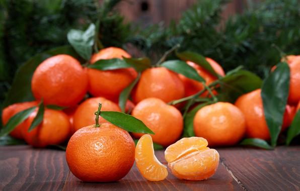 Picture leaves, citrus, slices, Mandarin