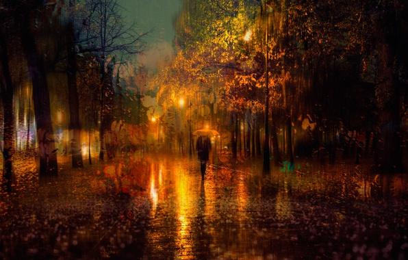 Picture autumn, girl, the city, lights, umbrella, rain, the evening, Saint Petersburg, Russia