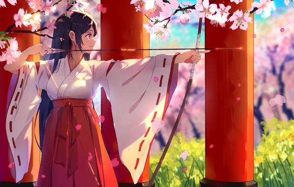 Picture girl, anime, beautiful, pretty, sakura, brunette, asian, bow, japanese, arrow, oriental, asiatic, bishojo, seifuku, miko