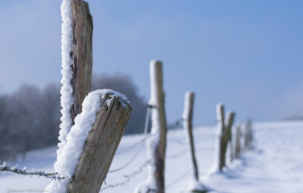 Picture winter, snow, close-up, the fence, fence, barbed wire