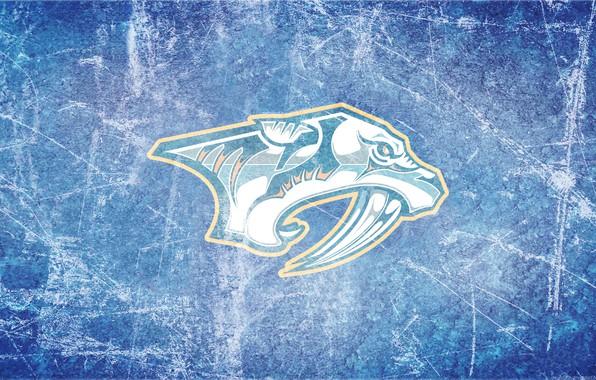 Picture ice, predators, emblem, NHL, NHL, Nashville, Nashville, hockey club, Nashville Predators, Nashville Predators