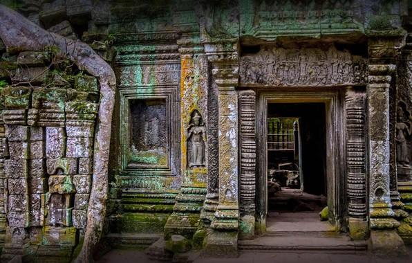 Picture ruins, Cambodia, the temple of TA Prum, Agar